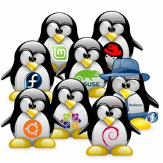 Tux-Linux-Distros-mini